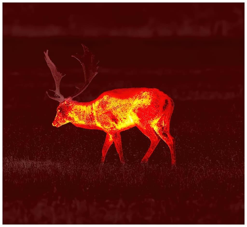Pulsar värviprofiil: Red Monochrome