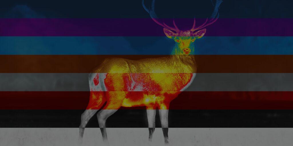 pulsar-8-color-palettes
